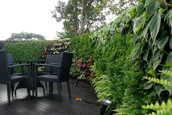Dise o de jardines verticales for Jardines verticales con madera