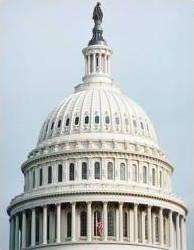 El Capitolio de Washington DC tiene una de hierro fundido