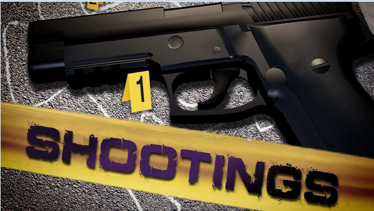 shootings art -  2-14-16_1518900169332.jpg.jpg