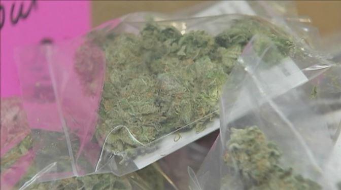 marijuana policy change