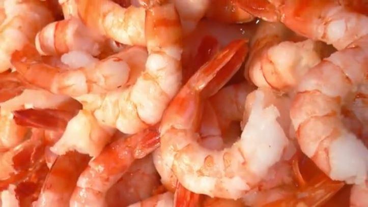 shrimp xyz_1559389676509.JPG.jpg