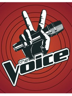 THE VOICE FOR WEB