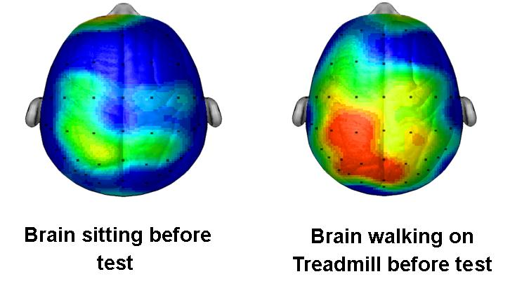 Graphic illustrates how a brain works when a person is sitting quietly versus when a person is walking on a treadmill. Graphic courtesy of Dr. Kenneth Cooper part of the Cooper Aerobic Institute.