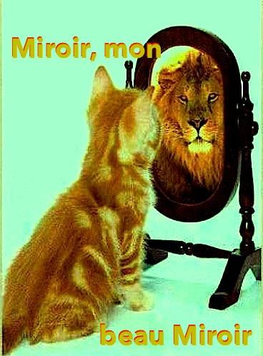 Illustration Mercredi - Un chat devant un miroir y voit un lion