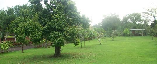 Bali Outbound - Tanah Wuk Sangeh Badung 012016