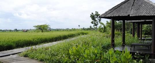 Outbound di Bali – Kertalangu Cultural Village Denpasar