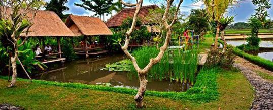 Paket Outbound di Bali - Warung Janggar Ulam Ubud