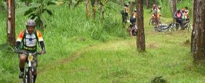 Outing Bali Cycling