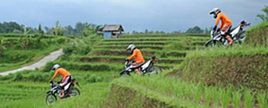 Bali Dirt Bike Adventure See