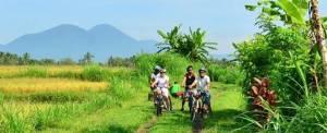 Outbound di Bedugul - Luwus Camp Cycling