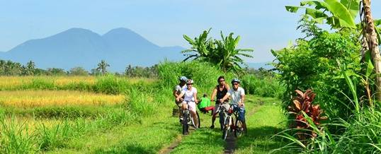 Outbound di Bedugul - Luwus Camp Cycling