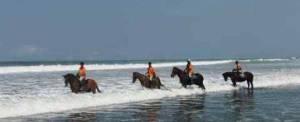 Adventure Bali Beach Horse Riding