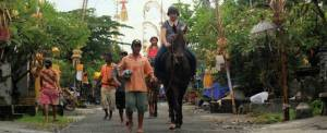 Adventure Bali Village Horse Riding