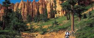 Peek- A-Boo Loop in Bryce Canyon National Park 1