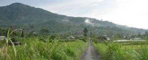 Adventure Bali Cycling Buyan