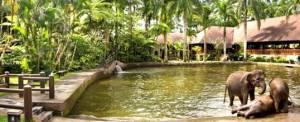 Bali Adventure Tours Park