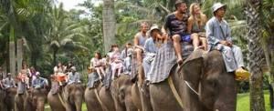 Naik Gajah Di Bali Adventure Tours
