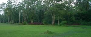 Outbound Bali Buyan Camping Ground