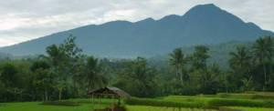 Adventure Bogor Trekking Gunung Salak 012016