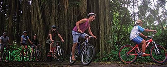 Outbound Di Bali Cycling Ubud Camp