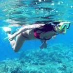 Paket Outing Snorkling The Menjangan