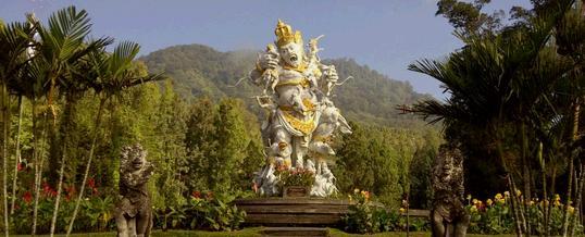 7 Tempat Atau Lokasi Outbound Di Bedugul Bali Kebun Raya