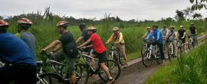 Bali Amazing Race Cycling Bongkasa 6