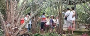 Offroad Di Bali Kebun Salak - GGA1