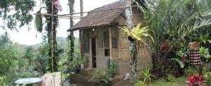 Paket Outing Rumah Di Dalam Hutan 3