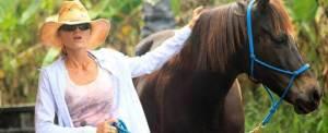 Paket Adventure Bali Island Horse Riding Tirta Gangga
