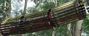 Bali Tree Top Outbound Terowongan Udara WWF