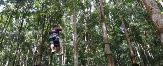 High Rope Di Bedugul Bali WWF
