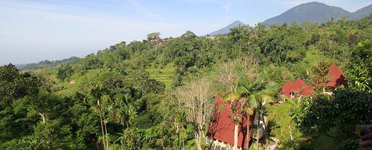 Paket Outbound & Meeting Bali Camp Baturiti 4