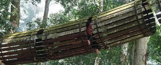 Outbound di Bali Treetop Kebun Raya Bedugul