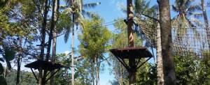 Paket Outbound di Bali Jungle Adventure - Game Pohon 20718
