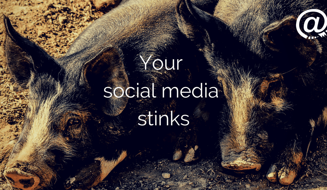 Your Social Media Stinks – A Skinnypigs case study