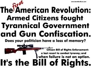 1st-american-rev-gun-rights