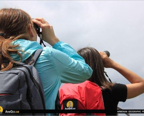 Birdwatching / Armenia