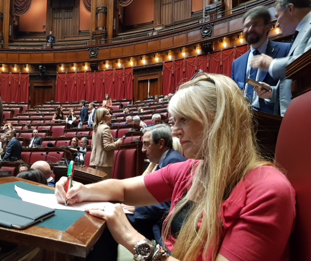 ON. Caretta scrive a Salvini: Direttiva armi penalizza settore