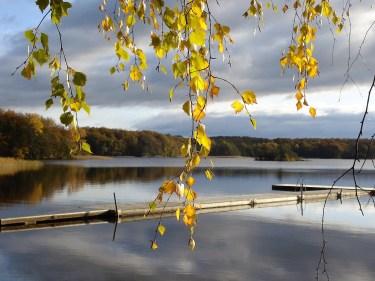autunno depressione
