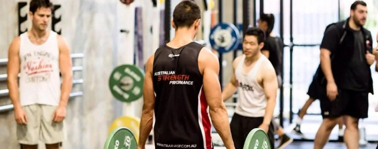 TrainASP: Optimal Movement For an Aesthetic Physique