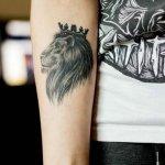 50 Rare Lion Tattoos For Arm