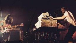 Elektroniche - Dollkraut - Luxor Live