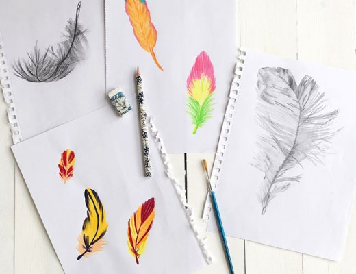 Feather drawings - Arnold & Bird
