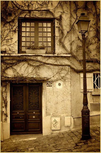 Vines, Montrematre, Paris