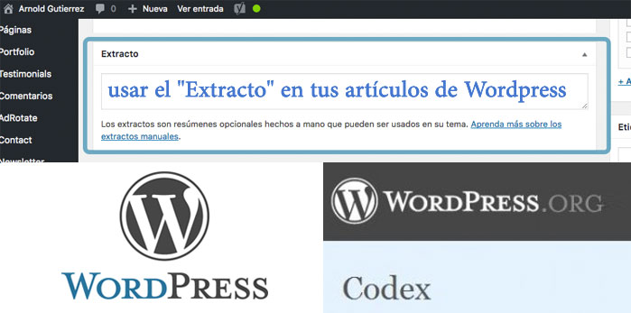 usar excerpt en wordpress