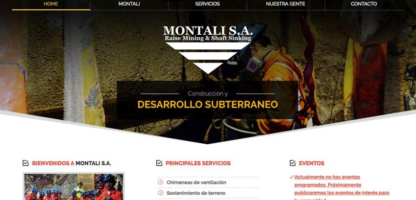 montali diseño web agencia digital web peru