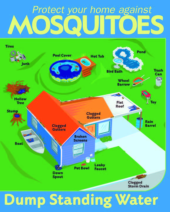 Protect Against Mosquitoes