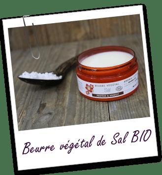 Beurre végétal Sal BIO Aroma-Zone