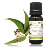 """Lutter contre les pellicules naturellement """"huile eucalyptus"""""""